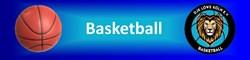 Abteilung Basketball