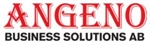 Angeno Business Solutions AB