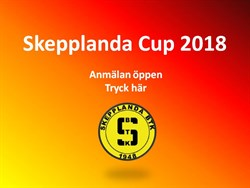 Skepplanda Cup 2018
