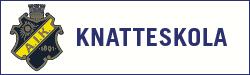 AIK Knatteskola 2019