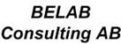 BELAB Consulting