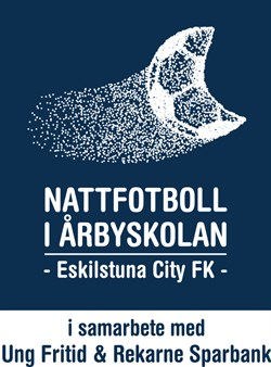 Nattfotbollen