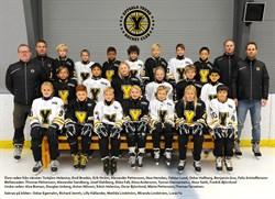 Uppsala Young Hockey Team -010