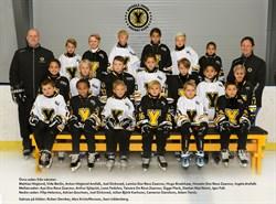 Hockeyskolan 2