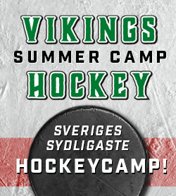 Vikings Summercamp