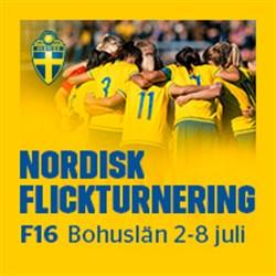 Nordisk flick