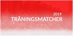 Träningsmatcher 2019