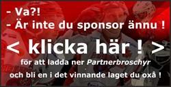 Sponsor-Partner