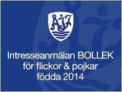 Intresseanmälan till Bolleken F-P 14 2019